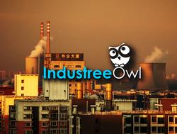Industree Owl