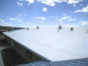 TPO roof.jpg