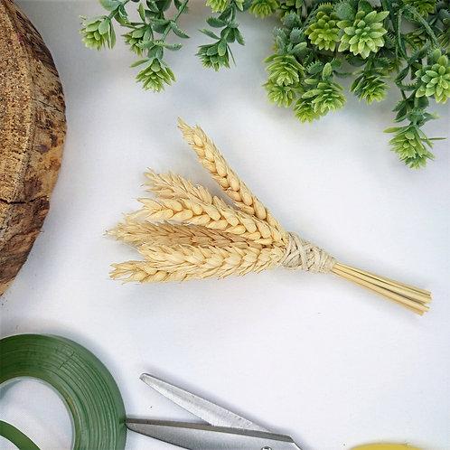 Dried wheat buttonhole