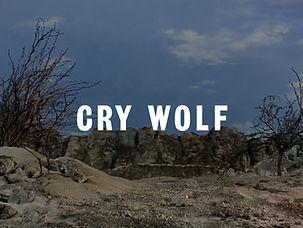 crywolf-00001.jpg