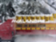 CS_Avalanche.jpg
