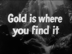 FiS_Gold is shere you find it.png