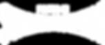FiS_Logo_White_Large.png