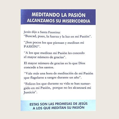 """Libro """"MEDITANDO LA PASIÓN ALCANZAMOS SU MISERICORDIA"""" Dólares"""