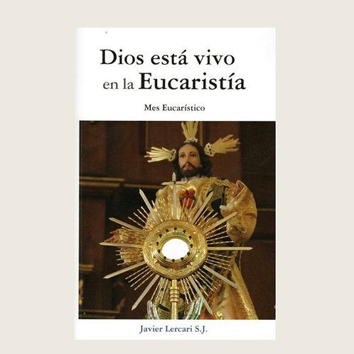 """Libro """"Dios está vivo en la Eucaristía"""" Dólares"""