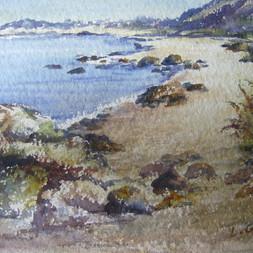 Gracie's Cove