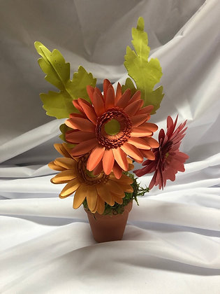 Pot of Gerbera Daisies
