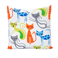 Euro Pillow-Smarty cat.png