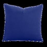 Blue Berry Blue Pillow.png