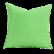 Jungle Green Pillow.png