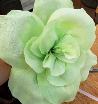 Creating Flowers for Serra Spring 2020