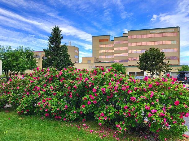 Alaska Regional Exterior_Roses.jpg