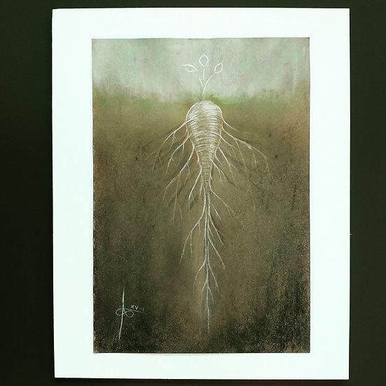 Parsnip (Print)