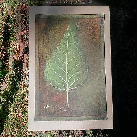 Stanley Park Leaf