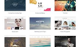 Wix 提供公司或網上商店模板 - wixhk