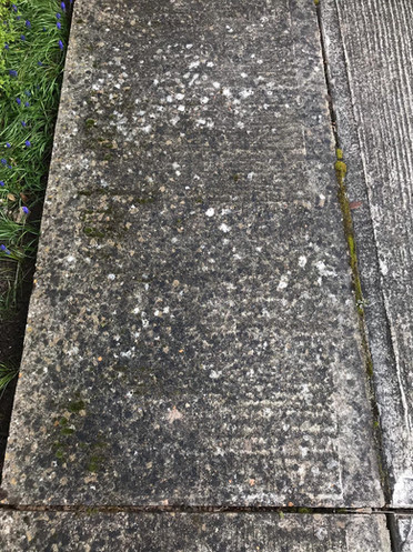 concrete path before.jpg