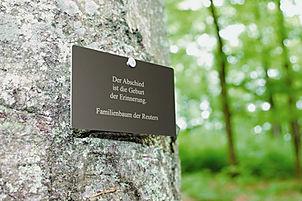 Eine Namenstafel am Baum macht auf die Grabstätte im FriedWald aufmerksam. Bild FriedWald