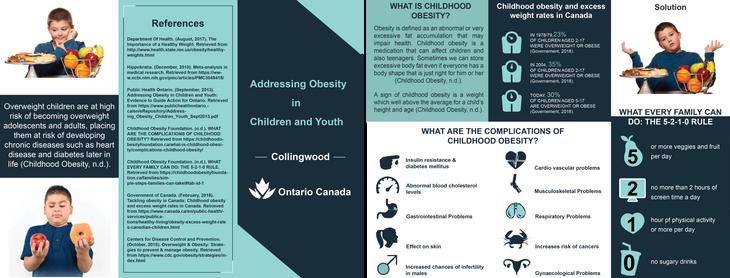 Health Promotion Brochure.png