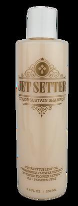Jet Setter Color Sustain Shampoo.png