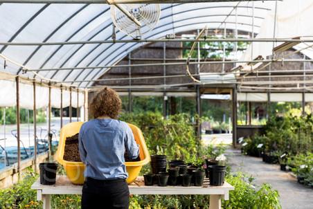 Female Worker At Garden Center