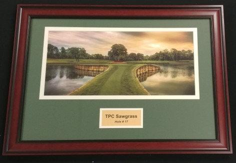 TPC Sawgrass #17 Framed Photo Display