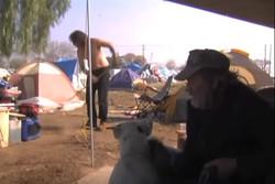 Ontario Tent City 1