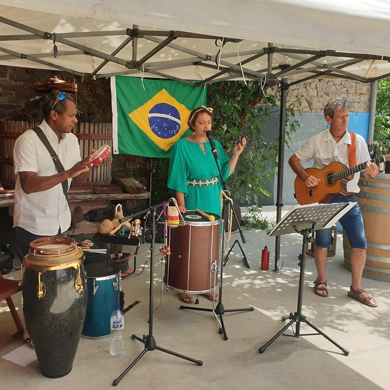 Trio Tropicalia à la Dolia à Castelnau-le-Lez