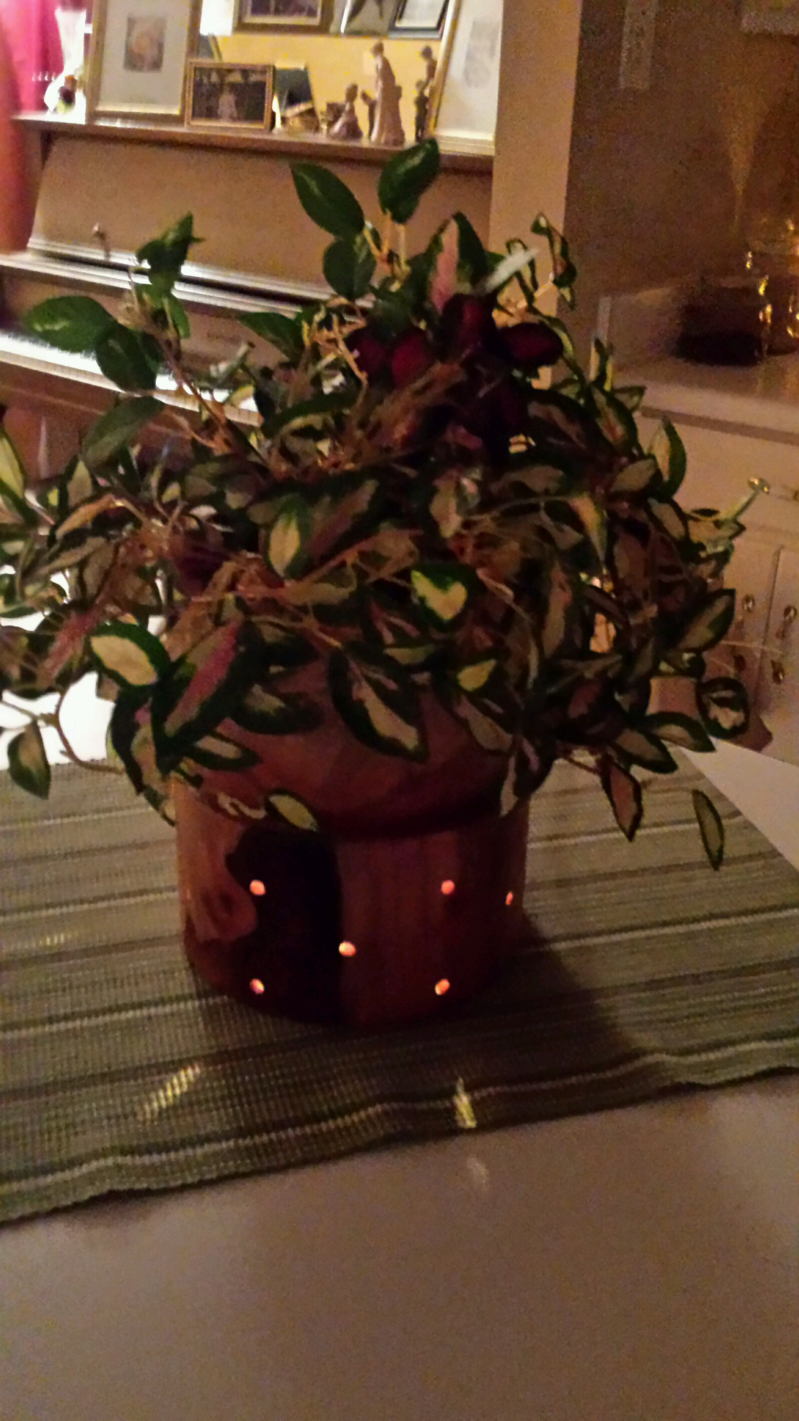 Ambiance Lighted Planter