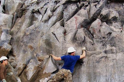 Climbing Rock Wall Display