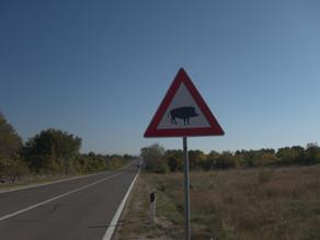 Slowenien - das Land der Veloreisenden und mürrischen Polizisten