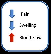 Pain Diagram.png