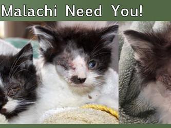 Gabriel and Malachi Need You!