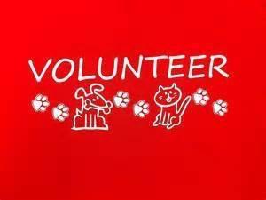 Fun Volunteer Opportunity