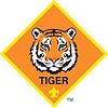 TIGER logo color.jpg