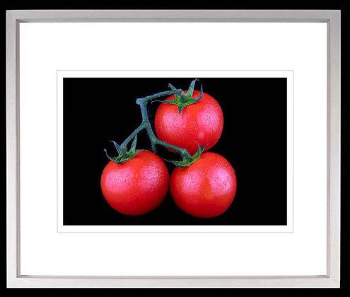 Tomatoes A4 inkjet print White Ash Frame