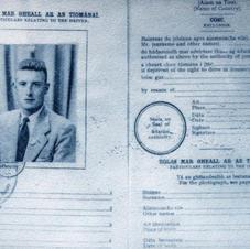 driving license.jpg