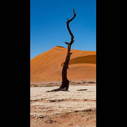 Namib Desery A3 Inkjet Print