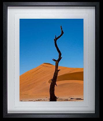 Namib Desert A3 inkjet print Black Ash Frame