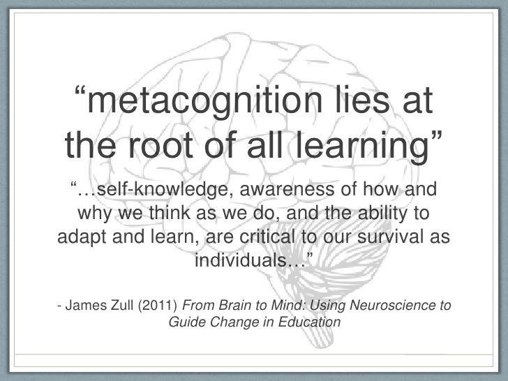 Metakognisjon er nødvendig
