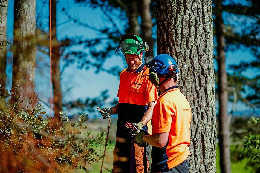 TreelandsBusinessBranding-WEBRES-49.jpg