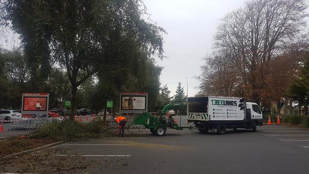 tree-clean-up-chartwell-treelands.jpg