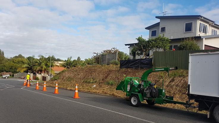 tricky-tree-removal-treelands-te-awamutu.jpg