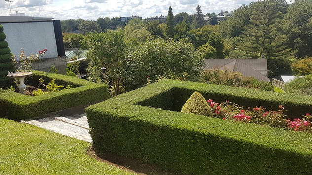 treelands-garden-care.jpg