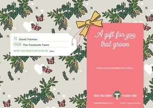 David TTC Gift Certificate 74878.bmp