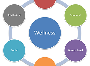 wellness-circles.png