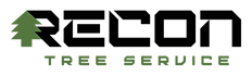 Recon Tree Service logo FINAL_without guy.png