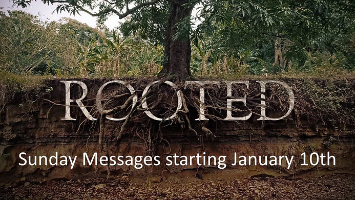 Rooted Initial Promo.jpg