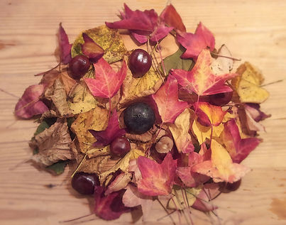 Autumnal leaves love -Cuddling cat - Reverend Bryony Wildblood Interfaith Minister Funeral Celebrant Spiritual Counsellor weddings funerals blessings