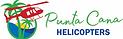logo helidosa (2).png
