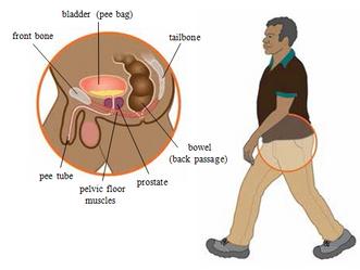 Почему возникает беспричинная боль в анусе?